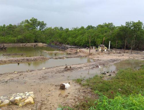 PM autua homem por Crime Ambiental em Aracaju